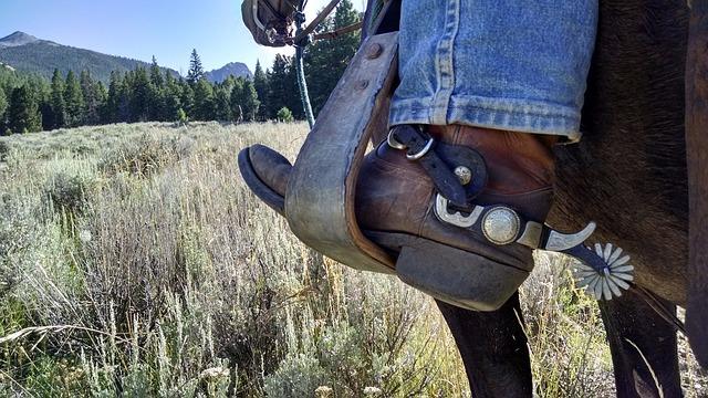 נעלי בלנסטון לשימוש יומיומי