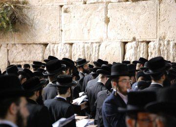אודות החרדים במדינת ישראל