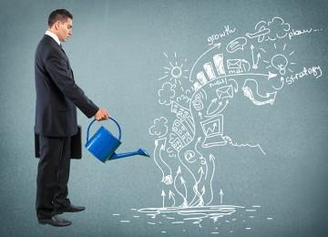 כיצד לבנות תיק השקעות סולידי?