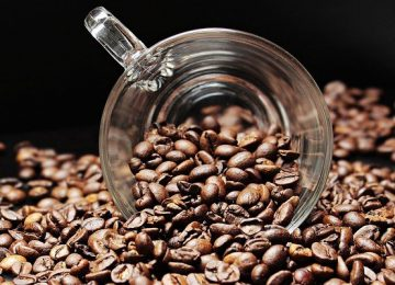 סוגי פולי קפה שכדאי להכיר