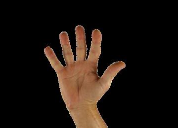 מגן אצבעות לדלת – כי על בטיחות לא מתפשרים