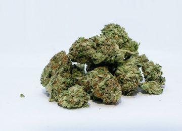 הסדר מותנה בתיקי שימוש בסמים בצבא / סגירת תיק סמים בצבא