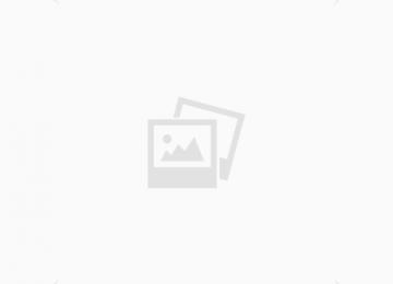 אלפא מוטורס- גם רכב איכותי וגם מימון מלא